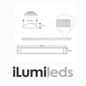 589-LUMLIN12036